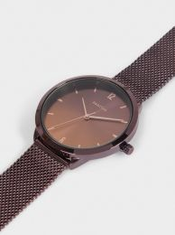 Watch With Stainless Steel Metallic Mesh Strap 189569